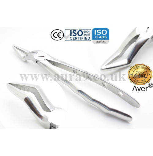Dental Extracting Forcep, No. 51 Upper Roots